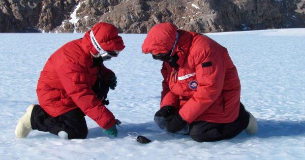 Türk bilim insanı Antarktika'dan 3 meteor getirdi